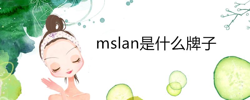 mslan是什么牌子