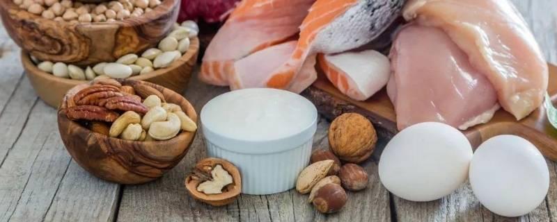 增肌一天需要多少蛋白质