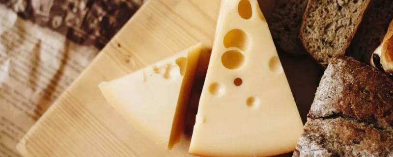 奶酪和芝士有什么区别
