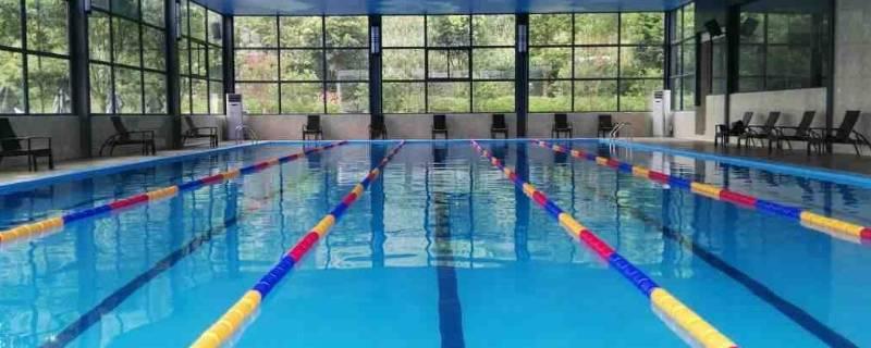 标准比赛游泳池长多少米