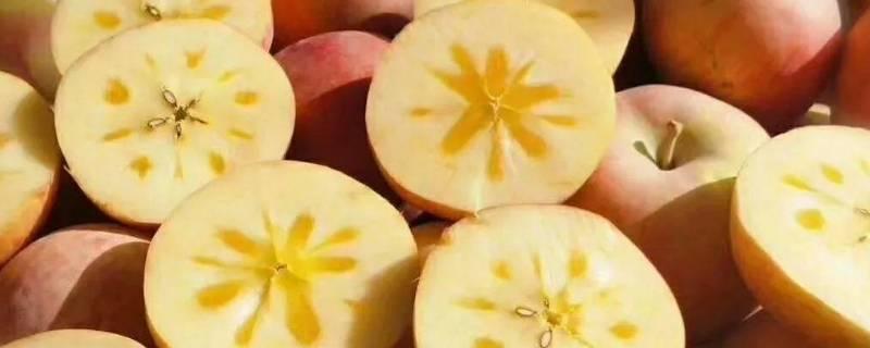 糖心苹果产地在哪里