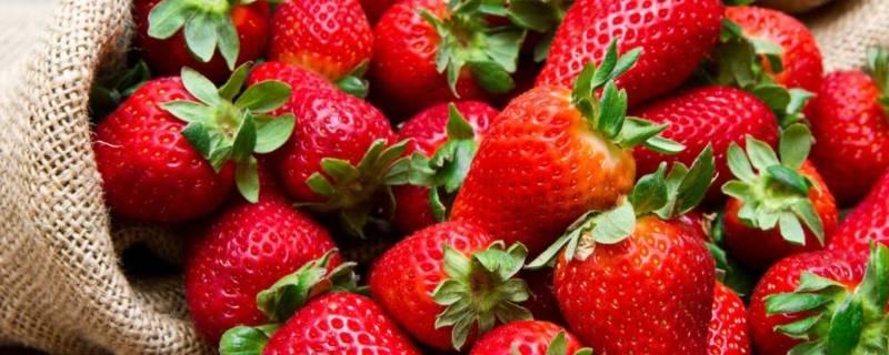 草莓怎么寄快递不会烂