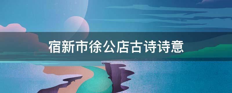 宿新市徐公店古诗诗意